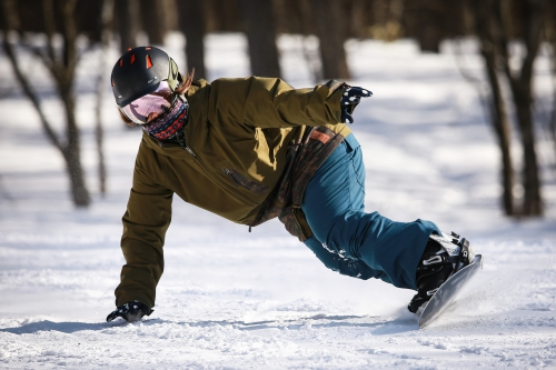 スキーで利用したい